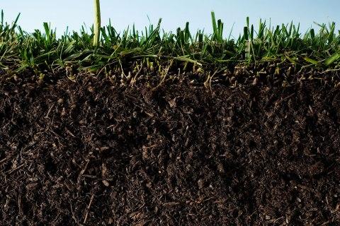 image: soil