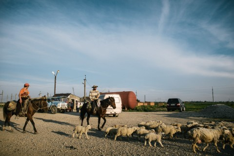 Two herders ride near the road from Kizlyar to Makhachkala on May 13, 2013.