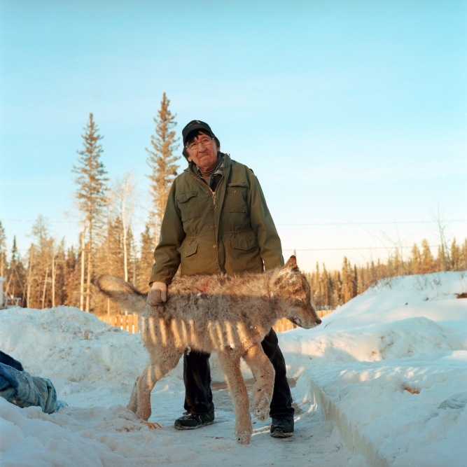 Elder Wilfred GrandJambe stands for a photo with a frozen wolf he had snarred and shot the day before near Fort McKay. As a hunter who grew up on the land, Grandjambe is very aware of the negative impacts the Oil Sands have had on the environment, animals and his culture. Yet with industry as the only employer in the area he understands the catch 22 his community is facing and has himself worked for both Sycrude and Suncor the two largest Oil Sands operations.