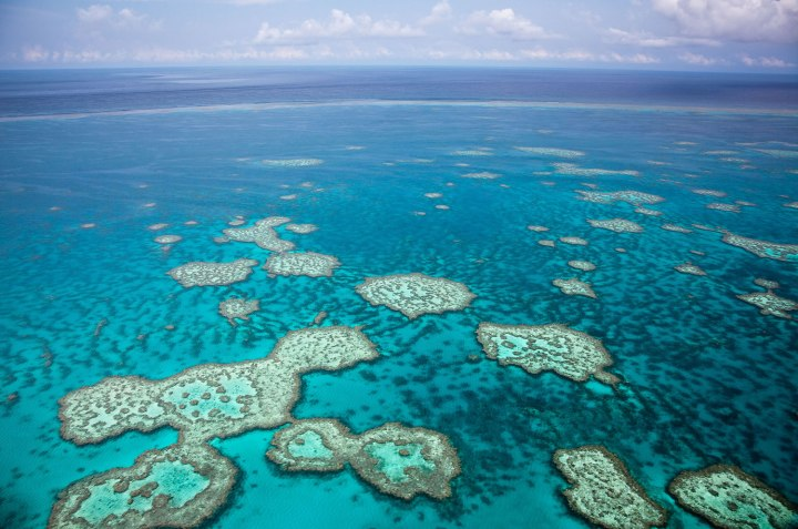 An aerial view of the Great Barrier Reef near the Whitsunday Islands in Queensland, Australia.