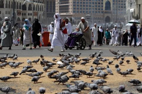 Muslim pilgrims walk past pigeons near the Grand Mosque in Mecca, ahead of the annual haj pilgrimage
