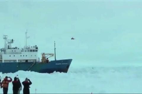antartics_export_1280